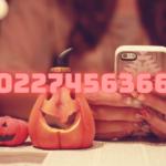 0227456366はAmazonカスタマーサービスからの電話でした